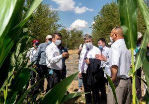 Сенаторы Абдалы Нуралиев и Муратбай Жолдасбаев в ходе поездки по Жамбылской области посетили хозяйства в селе Акшолак Байзакского района