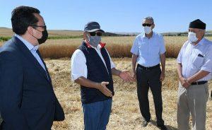 Аким Туркестанской области осмотрел посевы в Казыгуртском районе