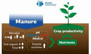 Исследование по удобрению почвы навозом