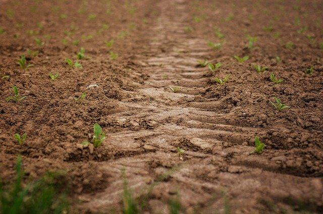 Весенне-полевые работы критически важен каждый день