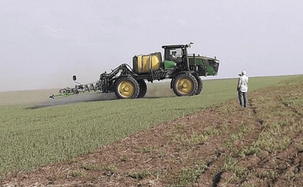 внекорневая подкормка пшеницы