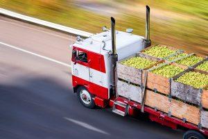 сертификаты для экспорта сельхоз продукции