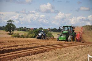 В ВКО засеют более миллиона гектар