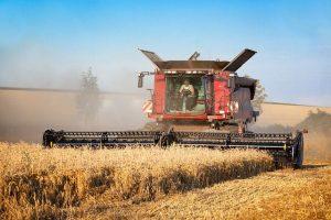 уборка зерновых 2020