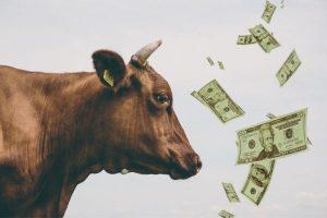 деньги для развития животноводства