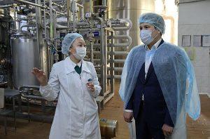 В Павлодарской области планируют максимально загрузить предприятия сельхозпереработки