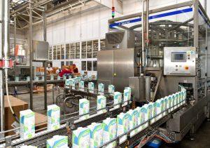 переработка молока в СКО