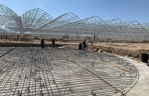 В Туркестанской области реализуется ряд инвестиционных проектов в секторе АПК