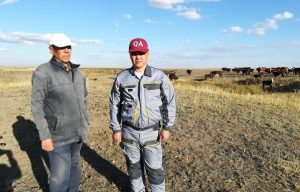 В проекте Старшие сеньоры приняло участие племенное хозяйство
