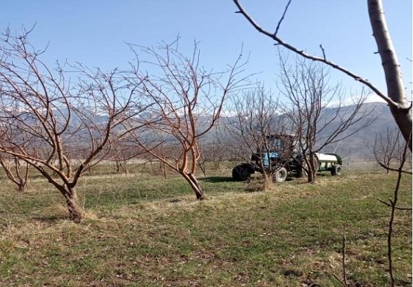 В региональном филиале КазНИИПО «Талгар» ведутся весенне-полевые работы