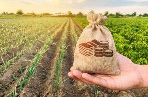 механизм гарантирования кредитов через АО «Фонд финансовой поддержки сельского хозяйства»,