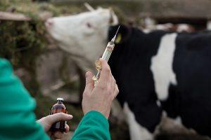 ветеринарные препараты разрешенные в Казахстане