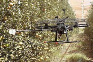 Уборочные дроны израильского стартапа Tevel оснащены возможностями искусственного интеллекта