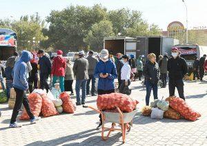 Ежегодная ярмарка сельхозпродукции прошла в Кызылорде