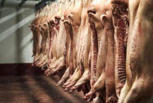 Казахстана имеет огромный потенциал нарастить экспорт свинины в Китай