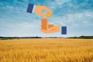 Казахстанские фермеры теперь могут защититься от последствий засухи
