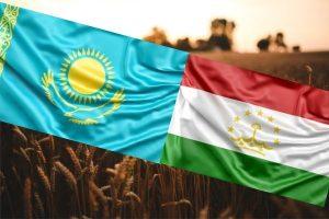 Казахстан и Таджикистан углубляют сотрудничество