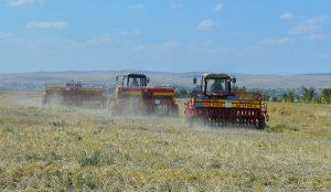 К посеву озимых зерновых приступили в Туркестанской области