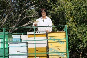 Медовый бизнес организовал выпускник «Бастау»