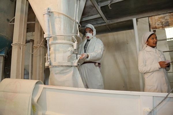 Мукомольное производство получило поддержку в Кызылординской области