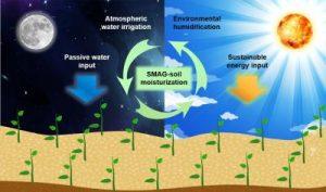 Процесс собирание воды из воздуха гидрогелевой почвой