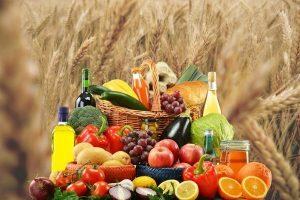 сельское хозяйство Туркестанской области