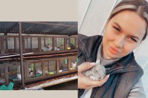 Девушка из Осакаровского района занимается разведением кроликов