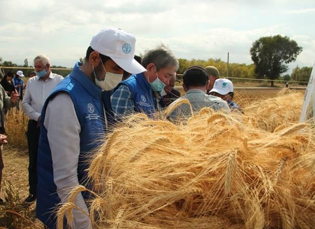 аграрии подводят итоги года