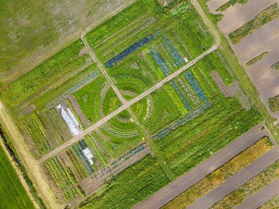 пиксельное сельское хозяйство