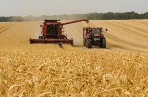 Принят приказ о предоставлении отечественных тракторов и комбайнов в лизинг