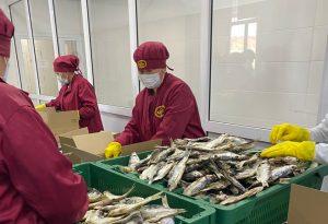 Производить рыбу, а не вылавливать призывает казахстанские хозяйства глава Минэкологии