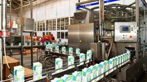 Производство молочной продукции в СКО