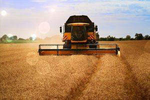 Сельское хозяйство Алматинской области