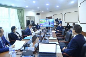 Сенаторы обсудили вопросы скотокрадства в приграничных регионах