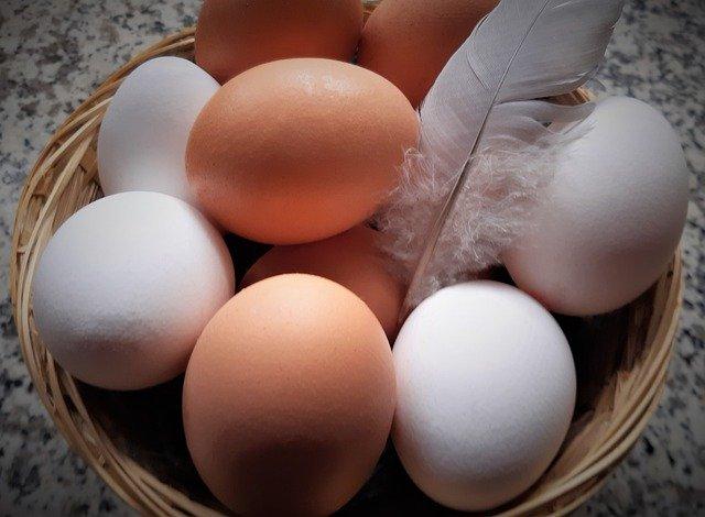 Субсидирование производства яиц оставят до конца 2020 года