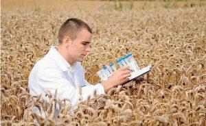 С-2021-года-планируется-ввести-субсидирование-затрат-субъектов-АПК-на-внедрение-научных-разработок