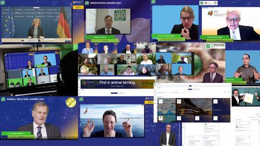 Успешный дебют EuroTier EnergyDecentral digital