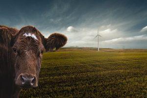 Фермерам выделили 27 млрд тенге дополнительных инвестиционных субсидий