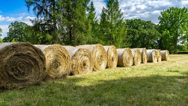 хранение тюков сена