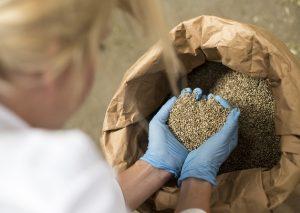 исследование проб сельскохозяйственной продукции