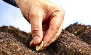 фермерам выплатят все долги по субсидиям
