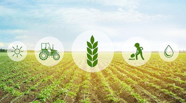цифровизация сельского хозяйства