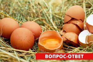 Вернут ли субсидии для яичного производства