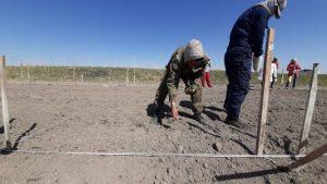 Весенне-полевые работы на экспериментальном участке КазНИИ Рисоводства идут полным ходом