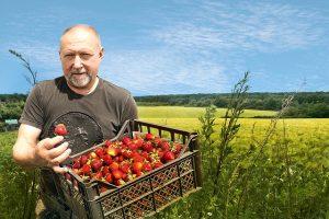 В Европе из-за коронавируса начались проблемы со сбором урожая