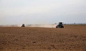 В Жамбылской области набирают обороты весенне-полевые работы
