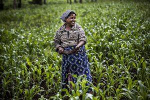 В июле зафиксирован рост цен на продовольствие в мире