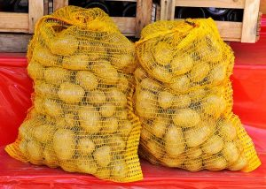 Начат прием заявок на получение квоты на вывоз семенного картофеля на МАЙ 2020 года
