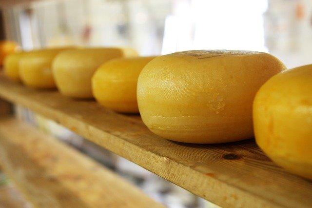 Новую технологию производства сыра разработали в Алтайском крае