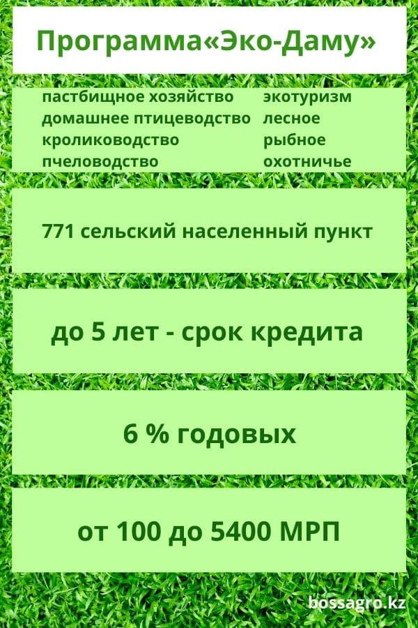 Инфографика: программа Эко-Даму